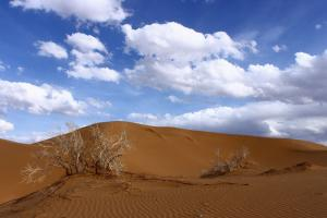 Maranjab Desert Tour Packages