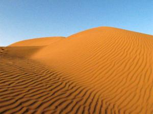 Iranian Desert Sands Tour Packages